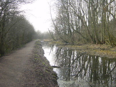 Fairbottom Branch Canal